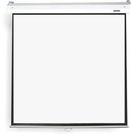Parrot Pulldown Projector Screen - 2110 x 1600mm