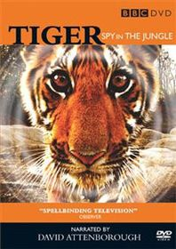 Tigers: Spy In The Jungle  (Import DVD)