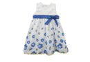 Phoebe & Floyd Garden Rose Party Dress with Band & Bow - White & Blue