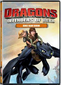 Dragon Riders: Defenders Of Berk Volume 4 (DVD)