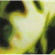 Smashing Pumpkins - Pisces Iscariot (2012) (CD)