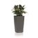 Lechuza - Maxi Cubi Table Planters - Charcoal Metallic