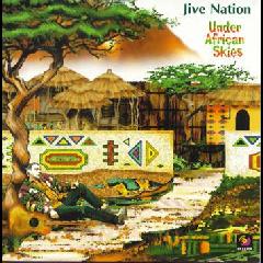 Under African Skies - Various Artists (CD)