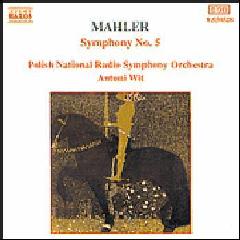 Polish National Radio Symphony Orchestra - Symphony No. 5 (CD)