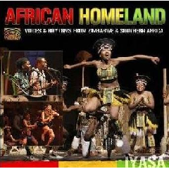 African Homeland - Voices And Rhythms Fr - Various Artists (CD)
