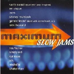 Maximum Slow Jams - Various Artists (CD)