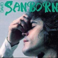 SANBORN DAVID - Sanborn (CD)