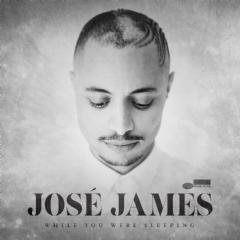 Jose James - While You Were Sleeping (Vinyl)