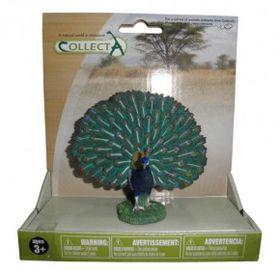 Collecta Wildlife Peacock - Medium