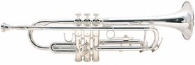Mason AL-310N Bb Trumpet Includes Case