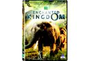 Enchanted Kingdom (DVD)