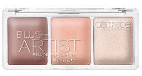 Catrice Blush Artist Shading Palette 010 Multi