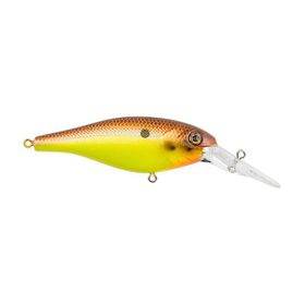 Berkley - Bad Shad Bait - BHBBS7-BMUST