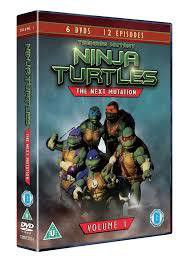 Teenage Mutant Ninja Turtles Vol 1 (DVD)