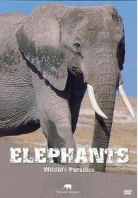 Wildlife Paradise - Elephants (DVD)