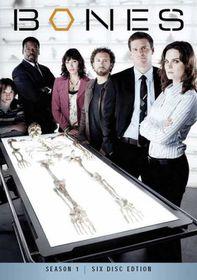 Bones Season 1 (DVD)