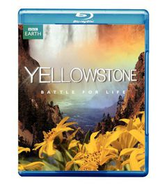 Yellowstone:Battle for Life - (Region A Import Blu-ray Disc)