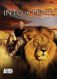 Into the Pride - (Region 1 Import DVD)