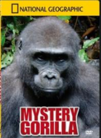 National Geographic - Mystery Gorilla (DVD)