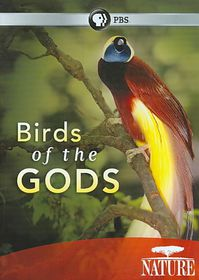 Nature:Birds of the Gods - (Region 1 Import DVD)