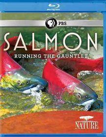 Salmon - (Region A Import Blu-ray Disc)