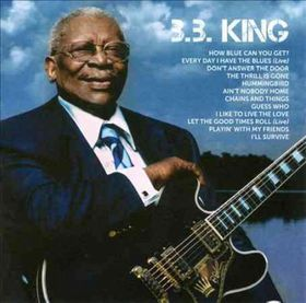 b.b King - Icon (CD)