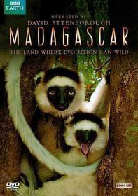 Madagascar - (Region 1 Import DVD)