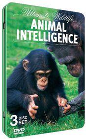 Animal Intelligence - (Region 1 Import DVD)
