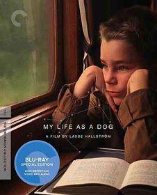 My Life As a Dog - (Region A Import Blu-ray Disc)