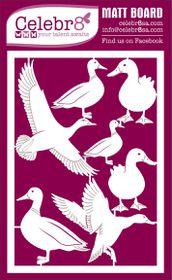 Celebr8 Matt Board Equi - Ducks